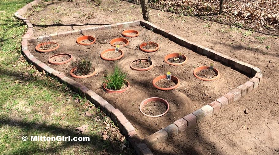 Garden boarder installed