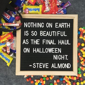 Quote from Steve Almond - Nothing on Earth is so beautiful as the final haul on Halloween night.