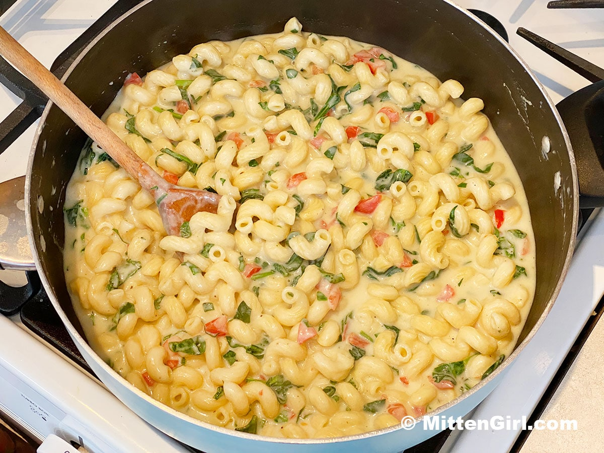 A big pan of Spinach Dip Pasta