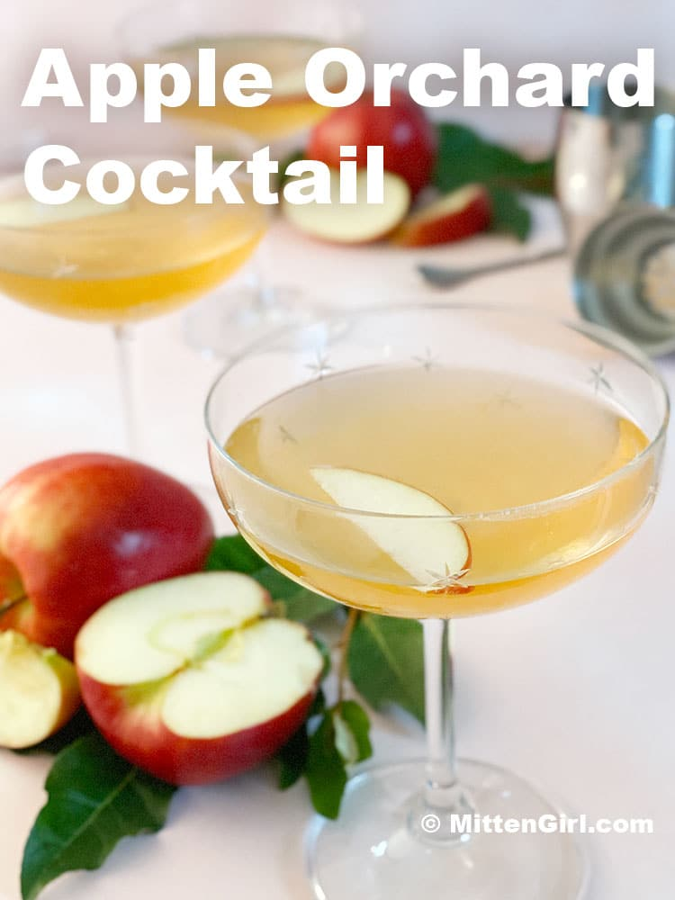 Apple Orchard Cocktail