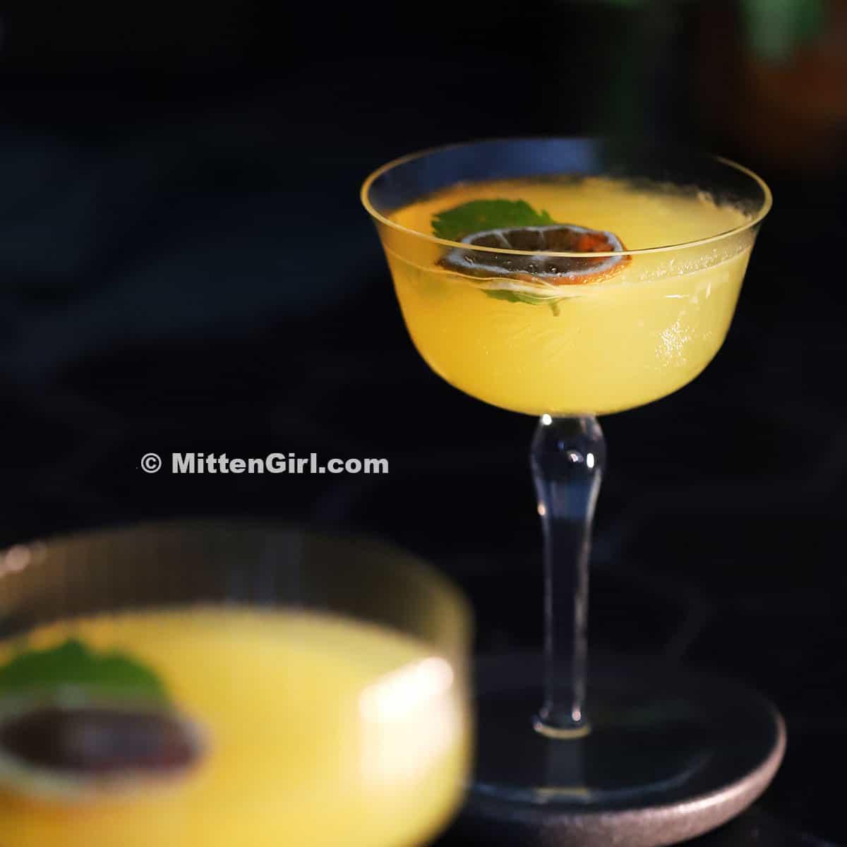 Honey Orange Gin Cocktail