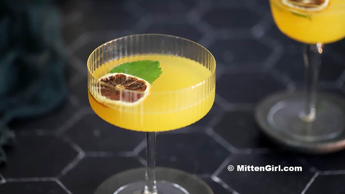 Honey Orange Gin Cocktails
