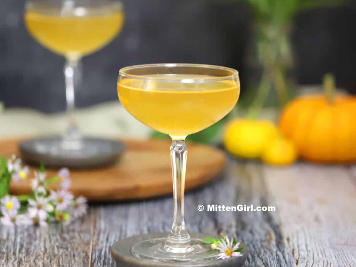 Pumpkin Ginger Martini