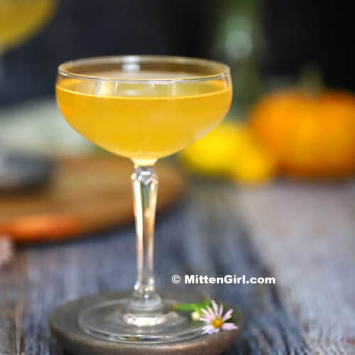 Ginger Pumpkin Martini