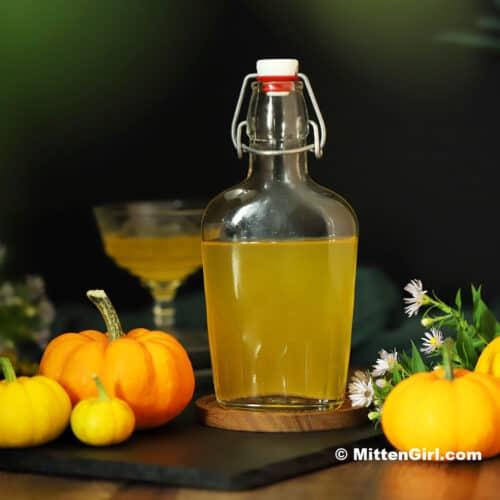 Pumpkin Infused Vodka